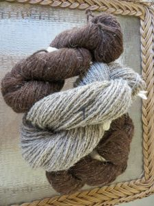 Dark brown Soay yarn from the UK brought to the Congress and my hand spun Herdwick. A shawl is being planned!