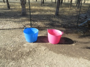 buckets outside